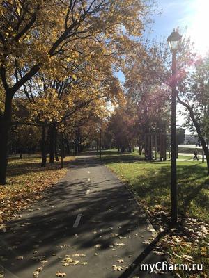 Золотая осень :)