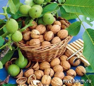 Перегородки грецких орехов: лечебные свойства настойки.
