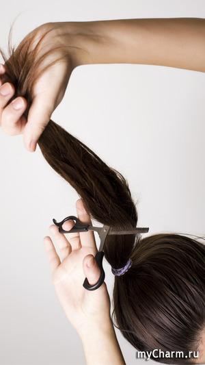 С чего начинается окрашивание волос?
