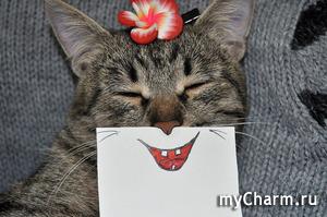 Ухаживаем, улыбаясь))