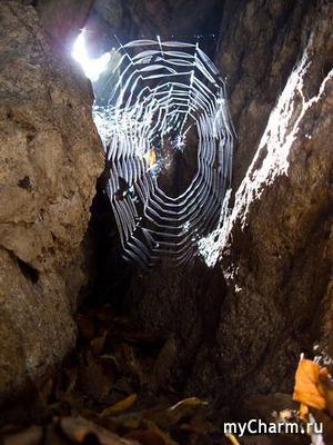 Чудо с паутиной