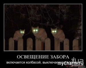 Святые вещи)))