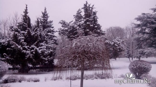 фото 4: И у нас выпал снег