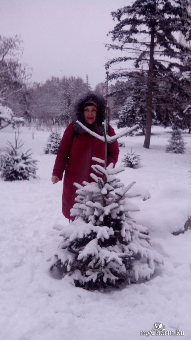 фото 8: И у нас выпал снег