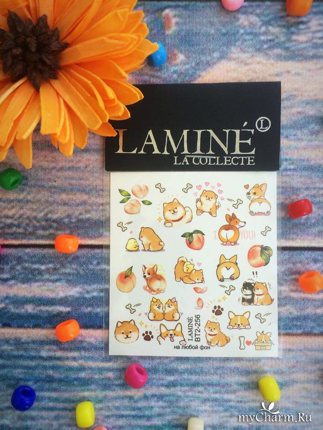 Стильный дизайн с Lamine la collecte