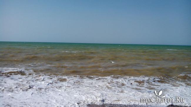 фото 2: Морской приветик!