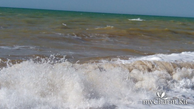 фото 4: Морской приветик!