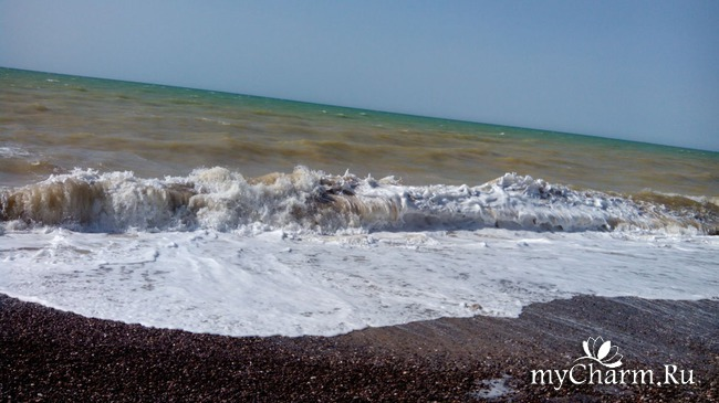 фото 5: Морской приветик!