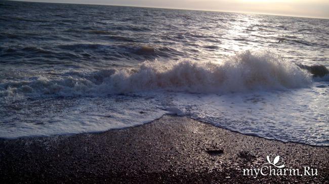 фото 9: Морской приветик!