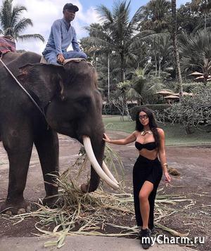 Канье Уэст приревновал Ким Кардашьян к слону