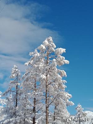 Третий снег