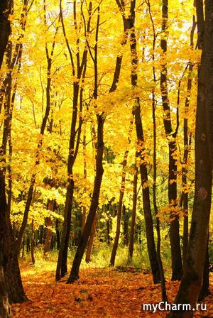 Что примерить этой осенью?