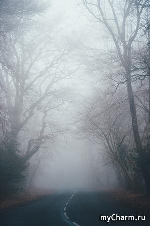 "Окрашивание ""Туманное утро"""