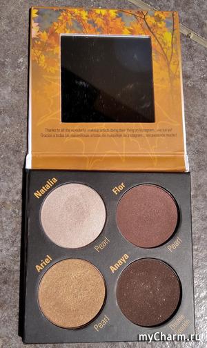 Палетка теней для осеннего цветотипа внешности от The Sola look iGracias palette.