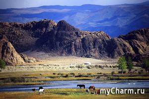В Монголии ввели бессрочный карантин из-за вспышки бубонной чумы