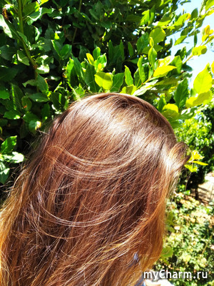 Ветер перемен в моём уходе за волосами. Alouisa.