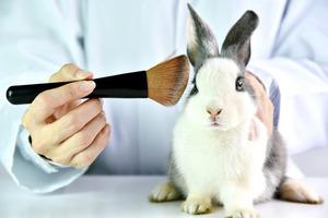 Garnier был официально признан не тестирующим продукцию на животных брендом